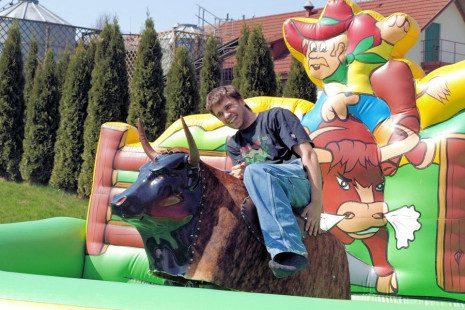 dla-doroslych-byk-rodeo-03