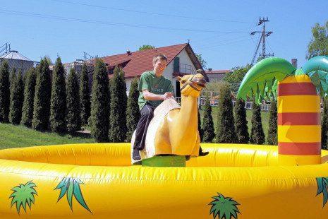 dla-doroslych-wielblad-rodeo-02